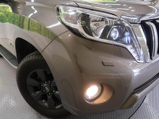 TX アルジェントクロス 4WD LEDヘッド ルーフレール(10枚目)