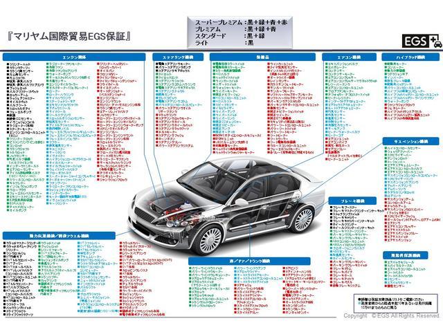 ポロ ファイン ETCワンオーナー DVDナビ 310(48枚目)
