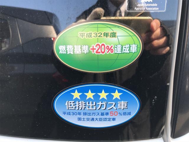 Xメイクアップリミテッド SAIII 軽自動車(20枚目)