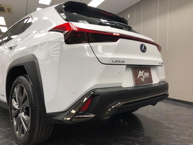 UX250h Fスポーツ 新車 3眼LED ムーンルーフ(6枚目)