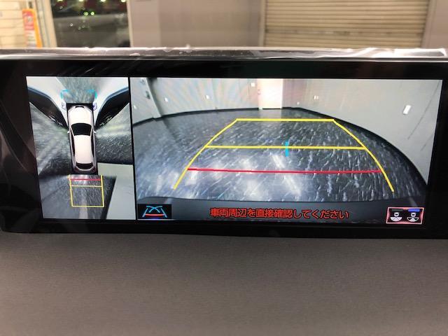 UX250h Fスポーツ 新車 3眼LED ムーンルーフ(12枚目)