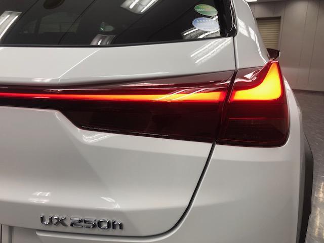 UX250h Fスポーツ 新車 3眼LED ムーンルーフ(18枚目)