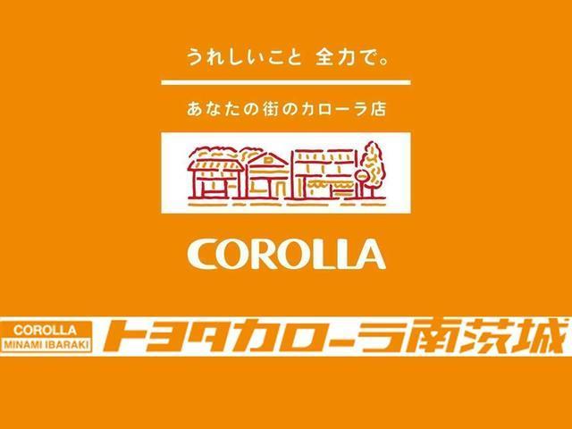 1.0X Lパッケージ・キリリ 純正ナビ・ETC・HID(53枚目)