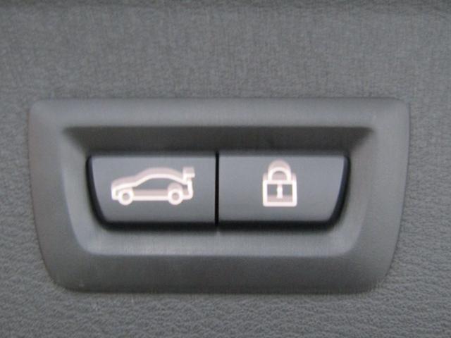 xDrive 20i Mスポーツ ワンオーナー車 純正ナビ・バックカメラ LEDヘッドライト 社外地デジチューナー 電動リアゲート(30枚目)