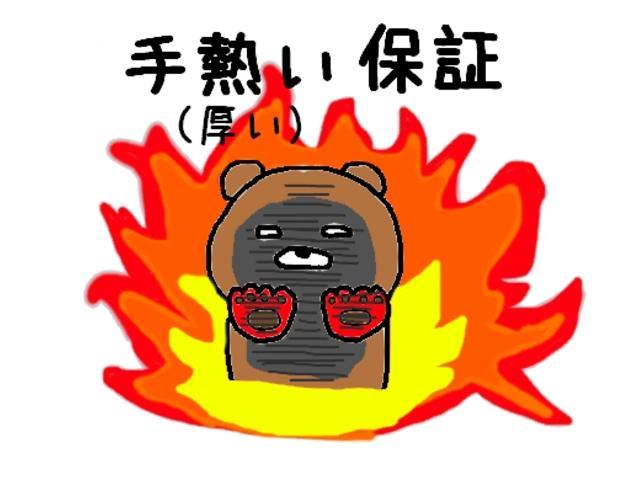 レピス 実走行31,000km 純正SDナビ ワンセグテレビ(32枚目)