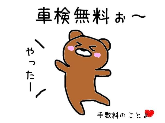 レピス 実走行31,000km 純正SDナビ ワンセグテレビ(35枚目)
