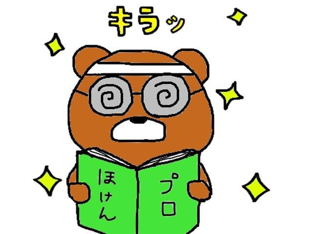 レピス 実走行31,000km 純正SDナビ ワンセグテレビ(44枚目)