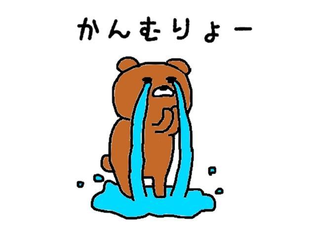 レピス 実走行31,000km 純正SDナビ ワンセグテレビ(48枚目)