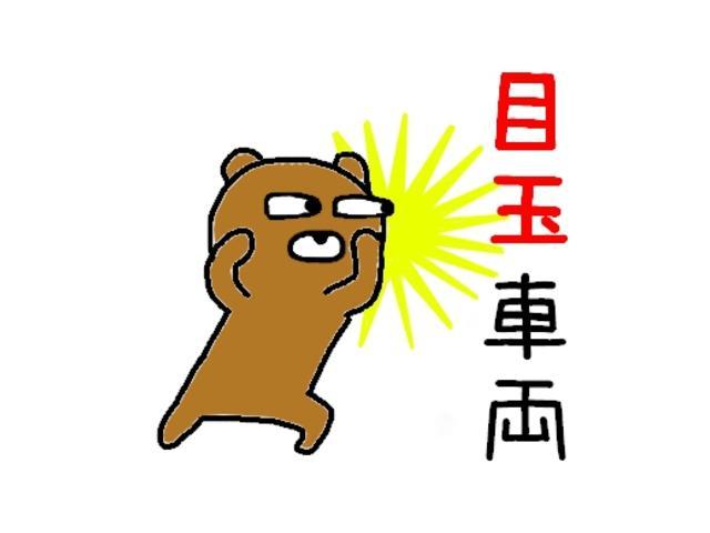 レピス 実走行31,000km 純正SDナビ ワンセグテレビ(55枚目)