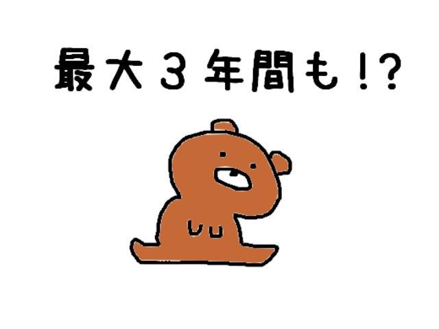 レピス 実走行31,000km 純正SDナビ ワンセグテレビ(72枚目)