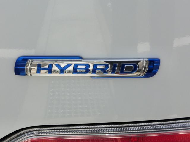 HYBRID FX 2型 前後セーフティサポート付き(16枚目)