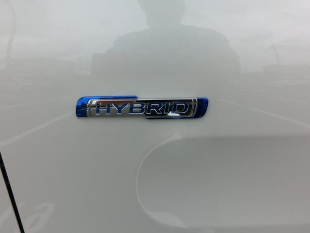 カスタム HYBRID XS2型 4WD 全方位カメラP(19枚目)
