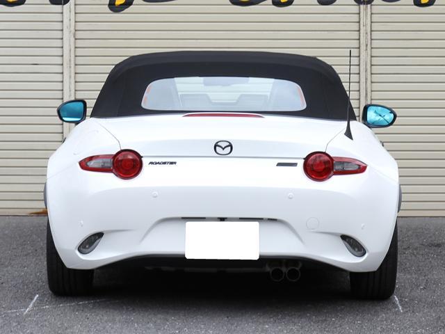 SスペシャルPKG 後期型ナビSDカードプラス HKS車高調(19枚目)