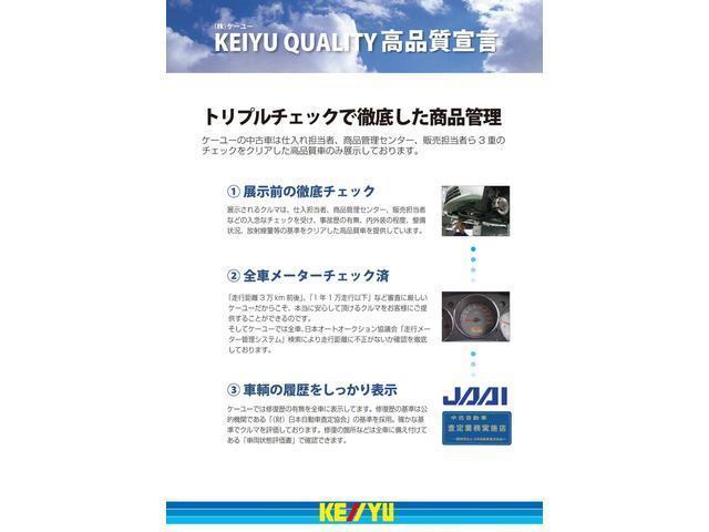 G・10thアニバーサリー メモリーナビ DVD CD ワンセグTV USB ビルトインETC HID オートライト スマートキー 電装格納ミラー(43枚目)
