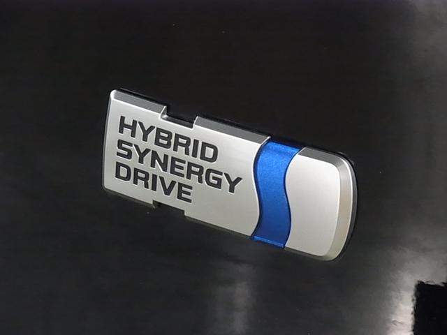 ハイブリッドG 4WD プリクラッシュブレーキ レーントレーシング リヤクロストラフィックアラート パーキングサポートブレーキ パワーバックドア 純正地デジSDナビ バックカメラ パワーシート ステアリングヒーター(49枚目)