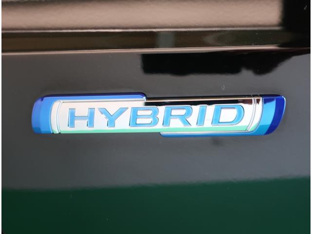HYBRID MZ(23枚目)