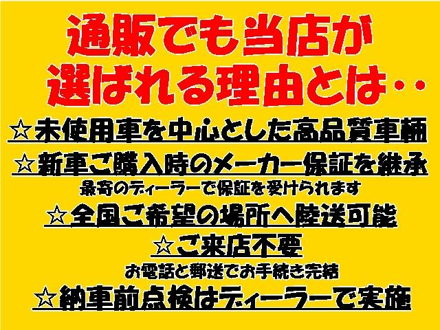 G SAIII 届出済未使用車/全方位カメラ/LEDライト(4枚目)