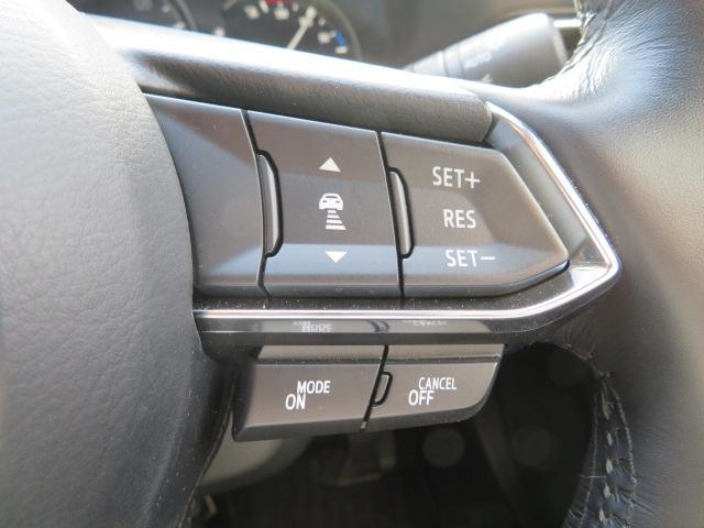 2.2 XD LPKGディーゼルT 4WD マツコネナビ B(12枚目)