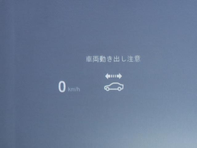 M4 CS 日本国内限定60台 460ps(16枚目)