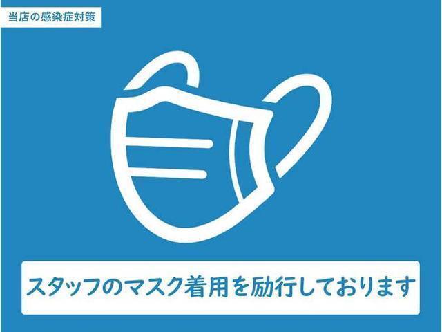 ウェルネスパッケージ スカイラウンジパノラマサンルーフ アルカンタラルーフライニング 茶革 21インチAW(43枚目)