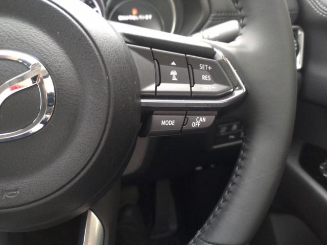 4WD25Sプロアクティブ 12セグSDナビBカメラLEDラ(16枚目)