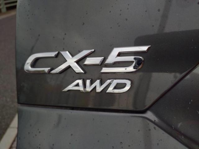 4WD25Sプロアクティブ 12セグSDナビBカメラLEDラ(26枚目)
