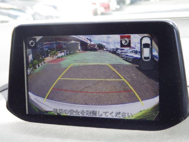 22XDプロアクティブ 車高調12セグMナビBカメラLEDラ(13枚目)