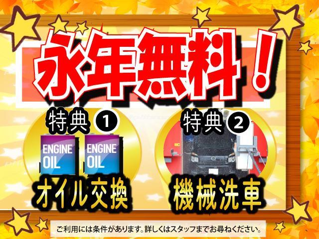 X メモリーナビ 片側電動スライド フルセグ バックカメラ ETC キーレスエントリー 記録簿(30枚目)