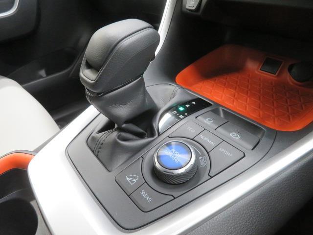 アドベンチャー メモリーナビ レーダークルコン 衝突軽減ブレーキ Bモニター LEDライト フルセグ ナビTV キーレス 試乗車アップ 4WD ETC 横滑り防止装置 盗難防止システム アルミ オートエアコン ABS(10枚目)