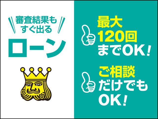 13G・Fパッケージ 純正ナビTV バックカメラ ETC ブルーテュース SD DVD再生 ミュージックサーバー LEDヘッドライト(55枚目)
