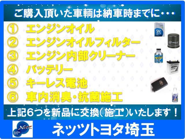 WSレザーパッケージ DAメモリーナビ・フルセグ(24枚目)