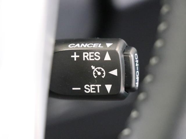 G AUX 横滑り防止機能 TVナビ パワステ メモリナビ ABS DVD 記録簿 オートエアコン エアバック 盗難防止システム パワーウィンドウ キーレスエントリ- クルーズC スマートKey 衝突回避(13枚目)