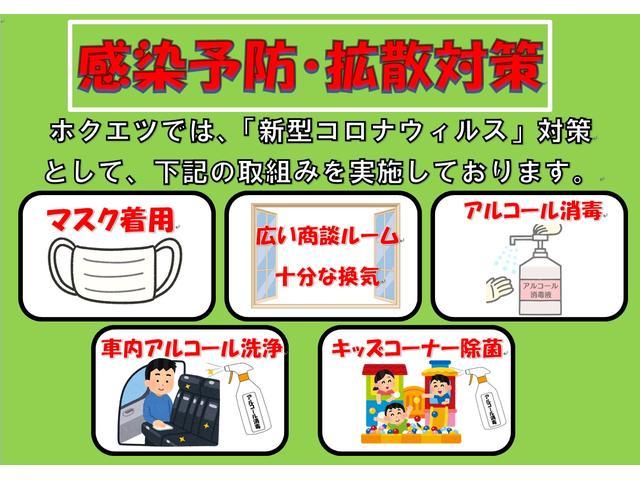 X Lパッケージ 衝突軽減ブレーキ・SDナビ・フルセグTV(48枚目)