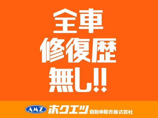 X Lパッケージ 衝突軽減ブレーキ・SDナビ・フルセグTV(63枚目)