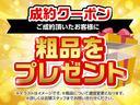 X Lパッケージ 衝突軽減ブレーキ・SDナビ・フルセグTV(66枚目)