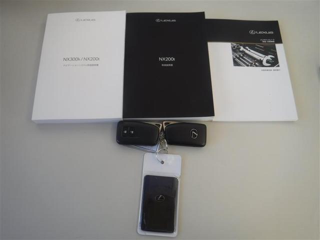 NX200t Iパッケージ プリクラッシュ フルセグSDナビ バックモニター ETC ワンオーナー(19枚目)