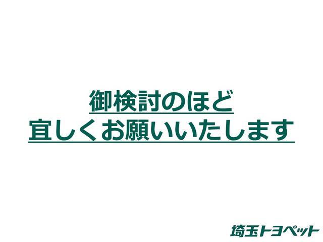 プレミアム メタル アンド レザーパッケージ(49枚目)