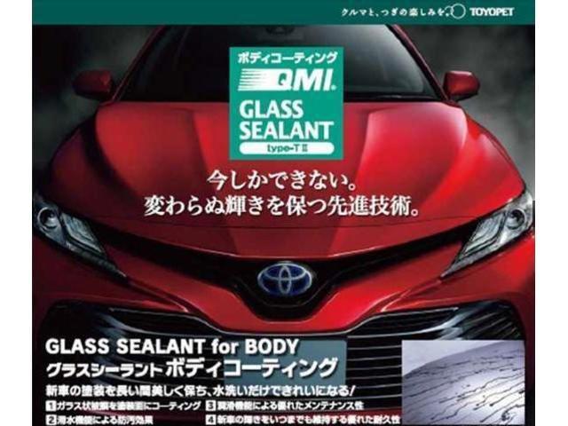 「トヨタ」「ラッシュ」「SUV・クロカン」「埼玉県」の中古車19