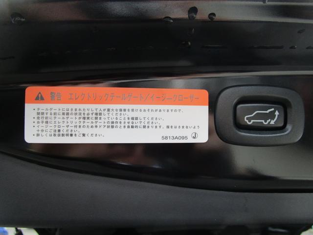 20GナビPKG 4WD 急速充電 純正ナビ 電動リヤゲート(10枚目)