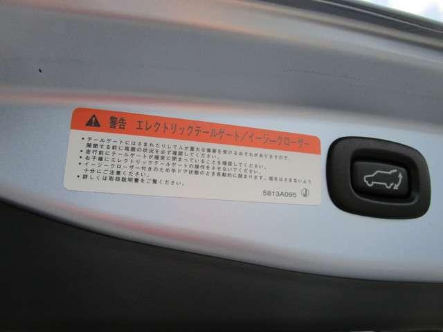 2.0 G ナビパッケージ 4WD 5人乗り 急速充電対応(13枚目)