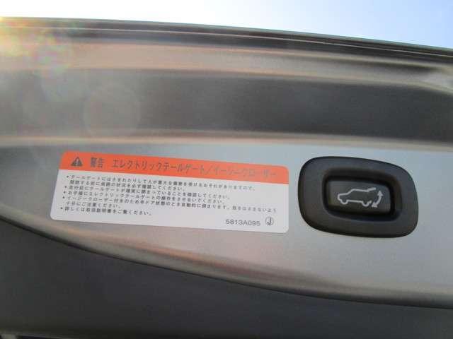 Gプレミアムパッケージ AC100V電源 ロックフォード(6枚目)