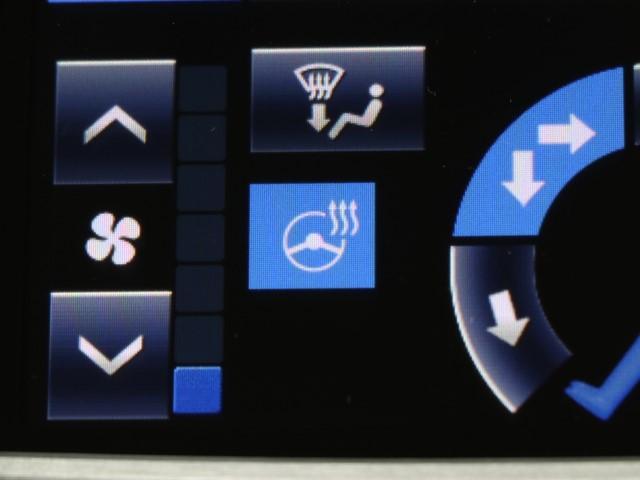 Fバージョン 衝突軽減ブレーキ機能・ドライブレコーダー付き(9枚目)