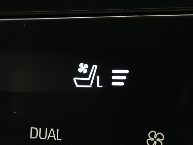 プレミアム メタル アンド レザーパッケージ 4WD スマートキー ETC サポカー サンルーフ レザー(12枚目)