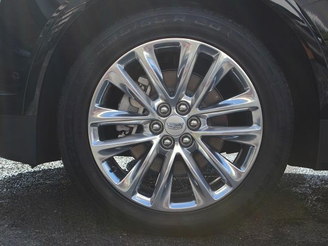 プラチナム 正規D車 新車未登録(19枚目)