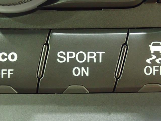 ラレード 認定中古車保証 サイドステップ クルーズコントロール キセノンヘッドライト(52枚目)