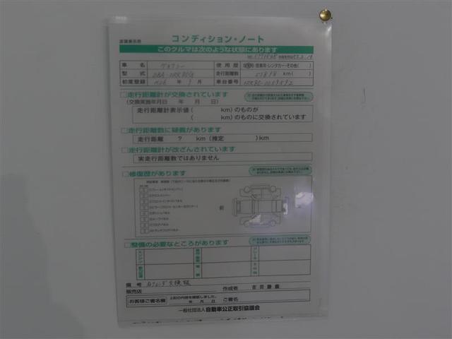 V フルセグ メモリーナビ バックカメラ ETC 両側電動スライド LEDヘッドランプ 3列シート ウオークスルー DVD再生 記録簿 乗車定員7人 オートクルーズコントロール アイドリングストップ CD(19枚目)