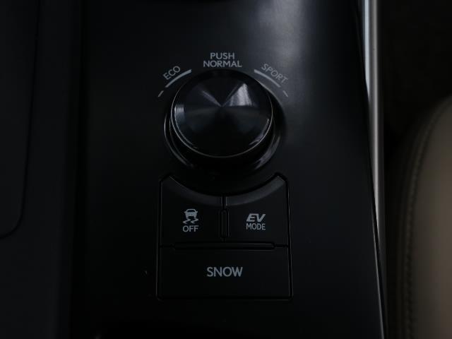 IS300h バージョンL 1オーナー 地デジ LED ナビTV ETC メモリーナビ 電動シート アルミホイール イモビライザー スマートキ- バックモニタ- レーダークルコン 革S 記録簿 DVD(10枚目)