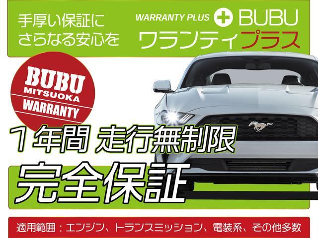LT RS 45周年記念限定車 専用デカール 専用カラー(2枚目)