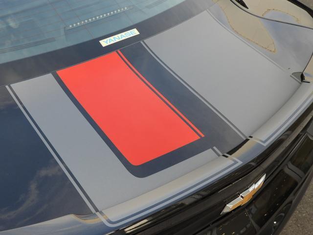 LT RS 45周年記念限定車 専用デカール 専用カラー(12枚目)