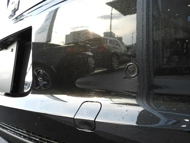 LT RS 45周年記念限定車 専用デカール 専用カラー(17枚目)